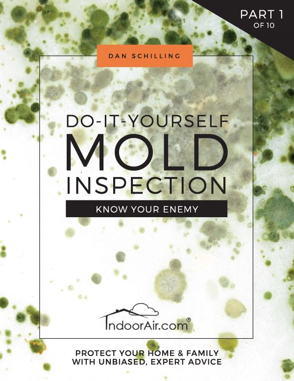 Book cover for DIY Mold Inspection - Know Your Enemy for finding black mold