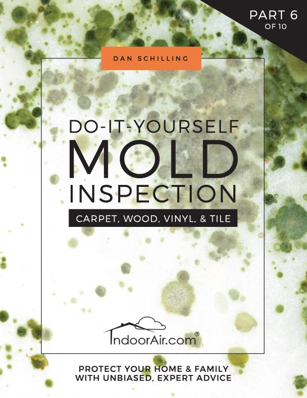 Book cover for DIY Mold Inspection – Carpet, Wood, Vinyl, & Tile teaches you how to find mold in carpet and other floor coverings